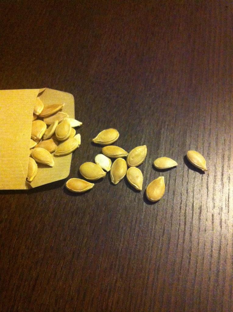 Quelques graines disponibles de potimarron, issus de la Ferme Sainte Marthe