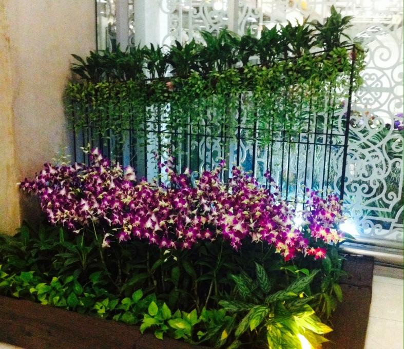 orchidées graphiques, toujours à l'aéroport de Bangkok