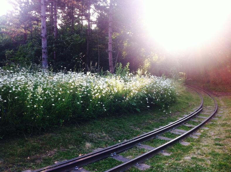 Chemin de fer, près du pont