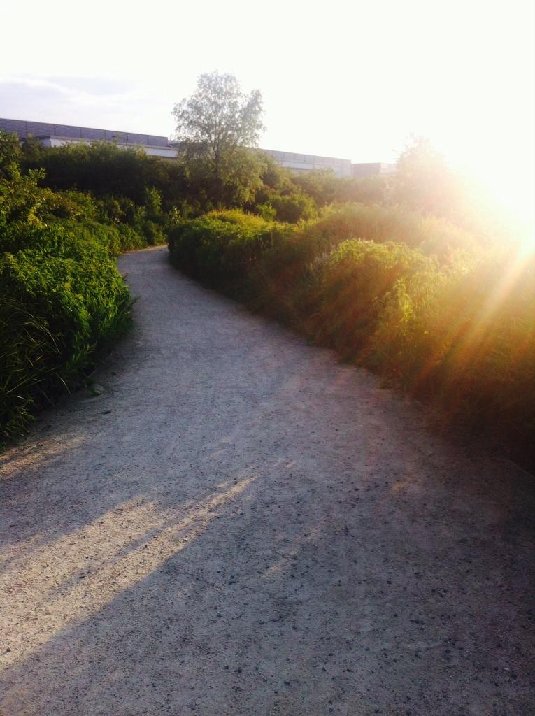 Chemin de sable sous un rayon de soleil