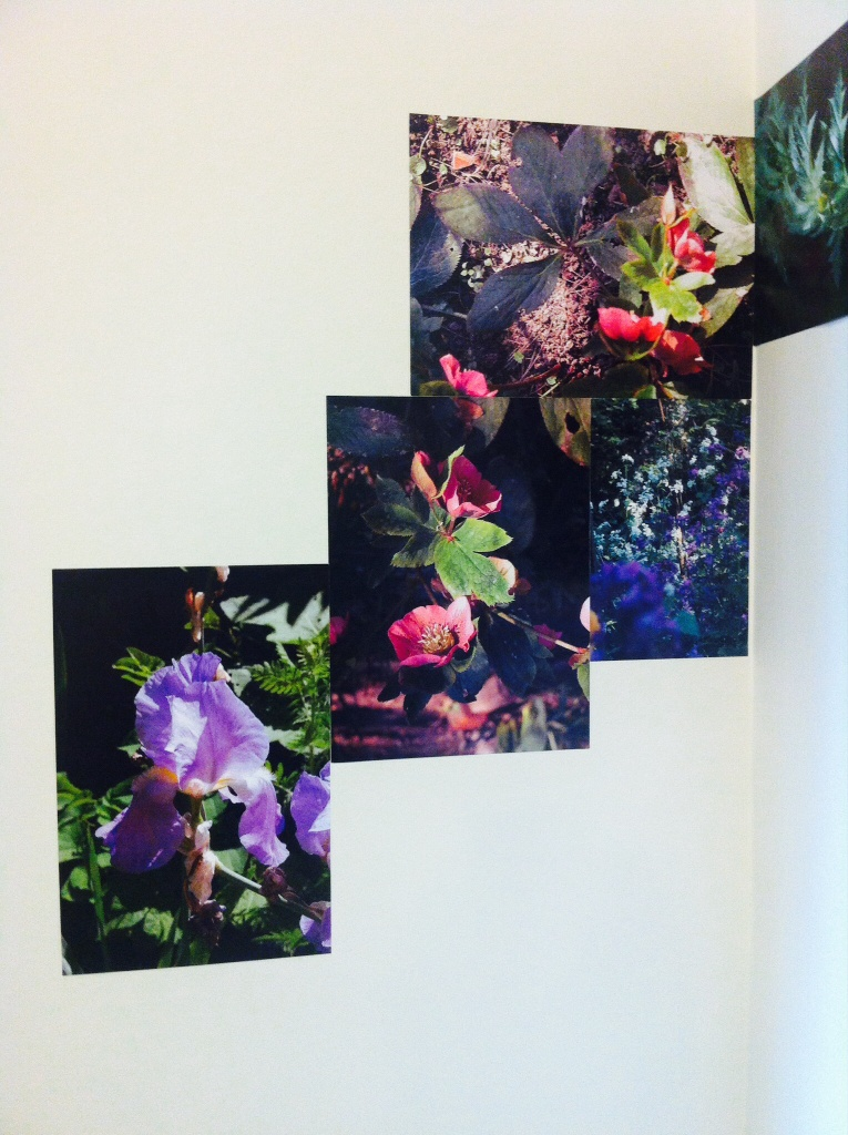 Des cascades de fleurs dans Les jardins de Simone