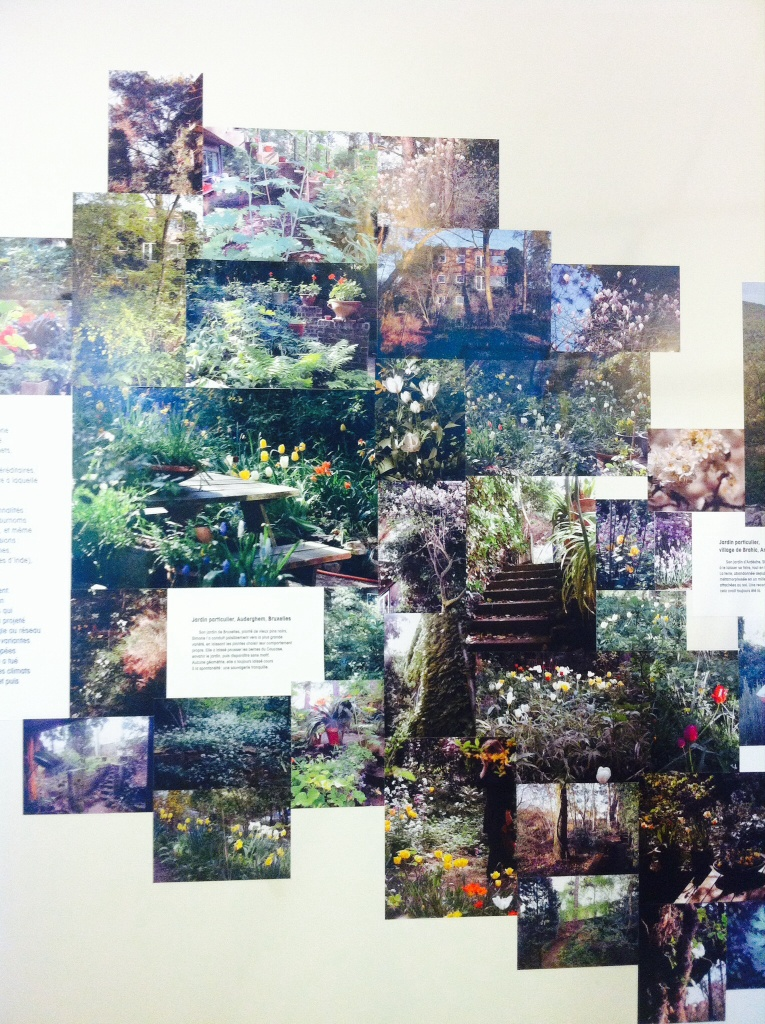 Flore du jardin de Bruxelles