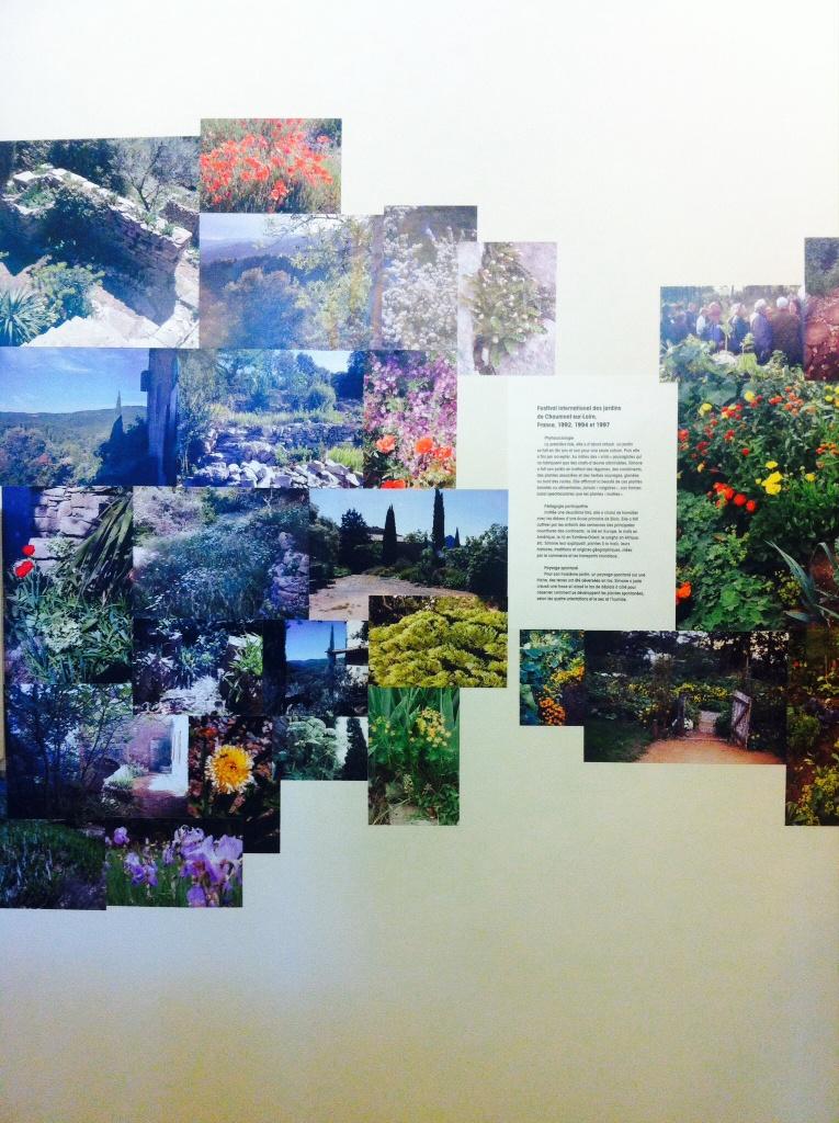 Des paysages fleuris sublimes, par Simone