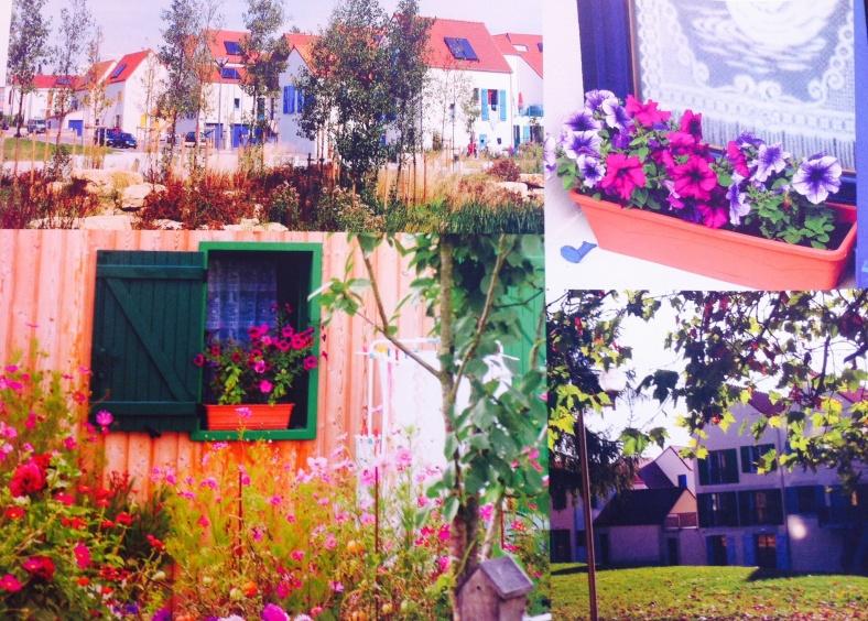 Auxerre, des logements vivants et des fleurs accueillantes