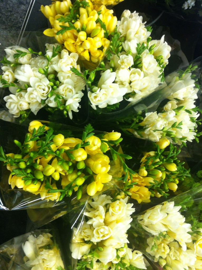 Fleuriste Saint Lazare, freesias blancs, crème et jaunes éclos et en boutons